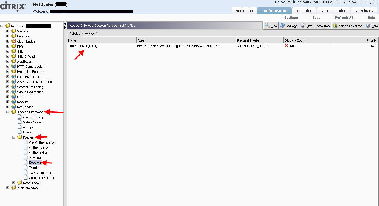 How to setup your Citrix NetScaler (Access Gateway) and Web